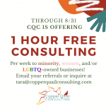 Free Consulting Offer